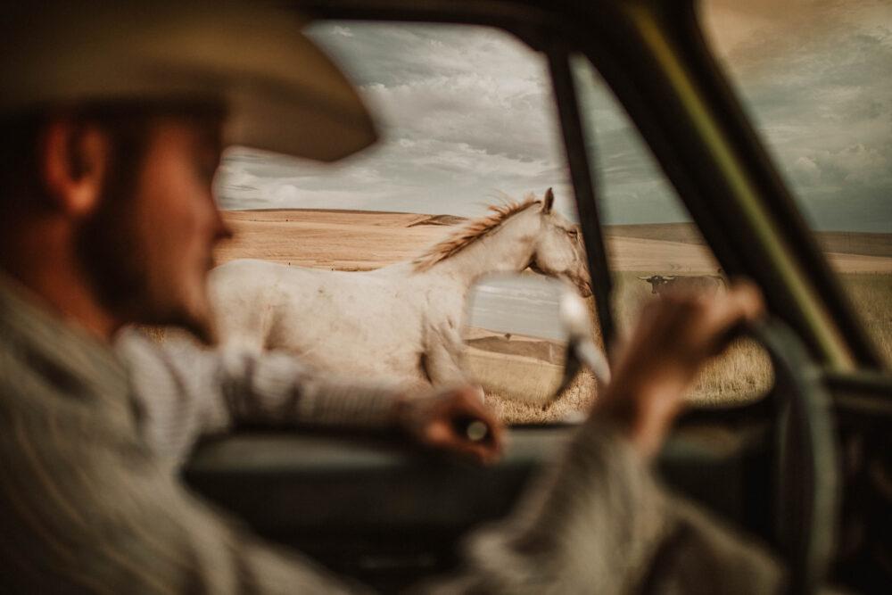 Ranch Paper Prints